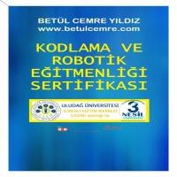 Kodlama ve Robotik Eğitmenliği Sertifikası (Uzaktan Eğitim)