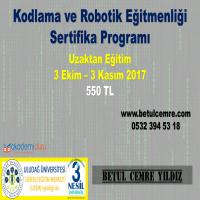 Kodlama ve Robotik Eğitmenlik Sertifikası Hakkında Bilgi