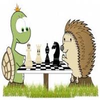 Satranç Başlangıç Sınıfı Açılıyor