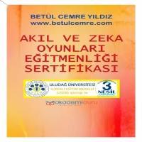 Zeka Oyunları Eğitmenlik Sertifika Programı
